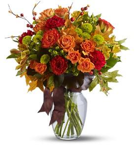 Dorchester Flowers