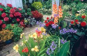 boston gardening resized 600