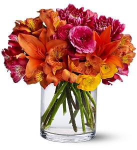 boston_graduation_flowers-resized-600.jpg