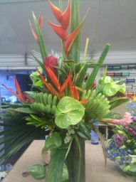 c  Users rickcanale Documents tropicals at exotic flowers 256