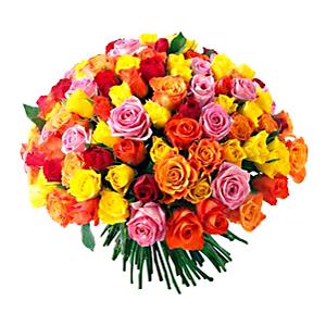 Ecuadorian Roses in Boston