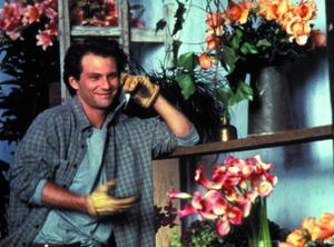 Slater the florist