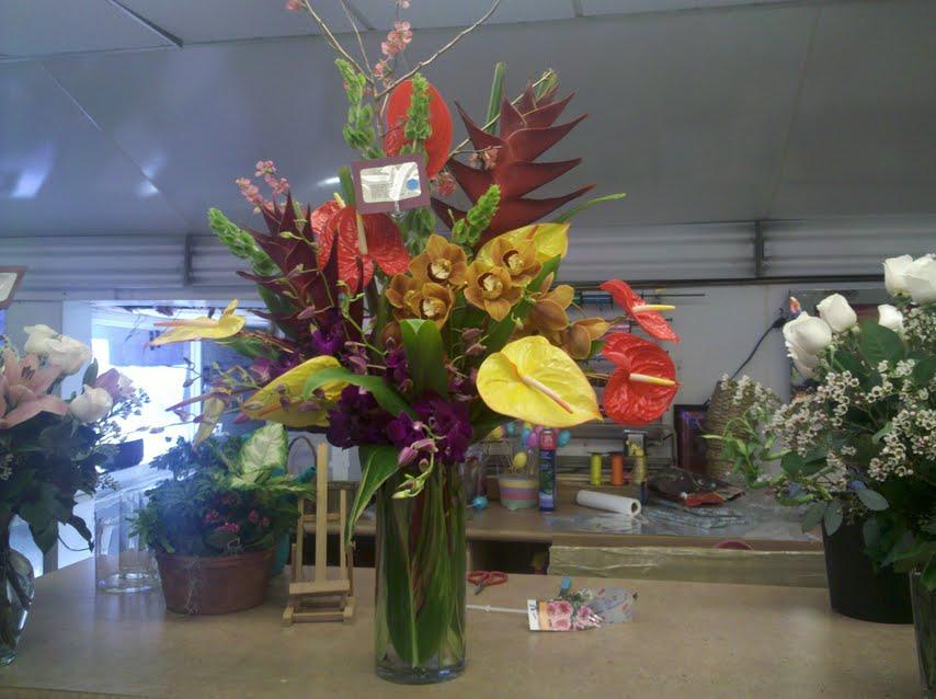 Exotic Flowers in Boston