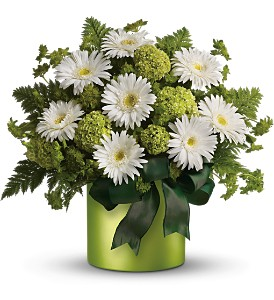 c--users-rickcanale-pictures-st_patricks_day_flowers.jpg