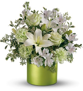 c--users-rickcanale-pictures-st_patricks_flowers.jpg