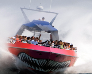 Codzilla Boston thrill ride