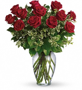 dozen_red_roses_in_boston-resized-600.jpg