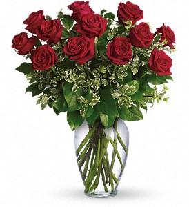 dozen_red_roses_in_boston-resized-600.jpg