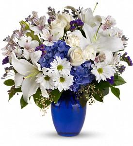 hanukah flowers in newton resized 600