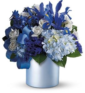 hanukah flowers in sharon resized 600