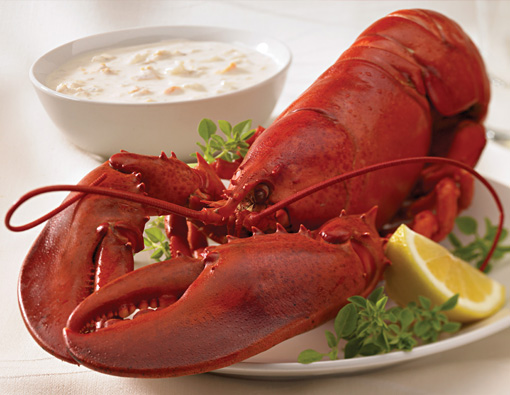 LobsterChowderHero resized 600