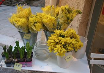 mimosa womens day boston resized 600