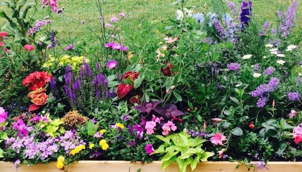 Westwood Garden