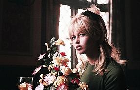 Bardot flowers