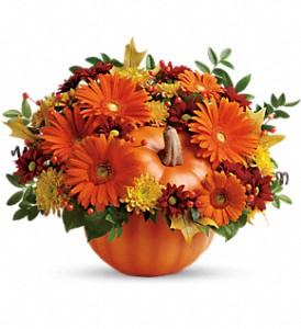 Flowers In A Pumpkin