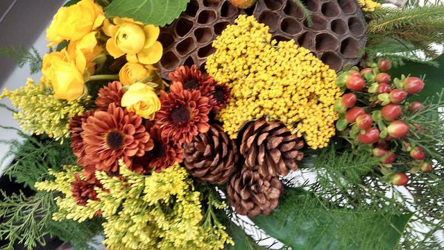 chrysanthemum_meaning.jpg