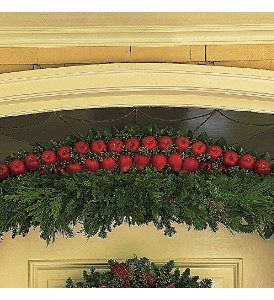 CHRISTMAS_DOOR_ARCH_BOSTON