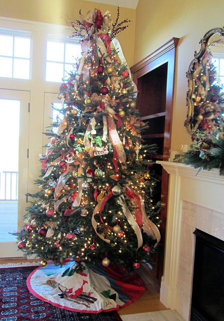 Christmas Tree Boston