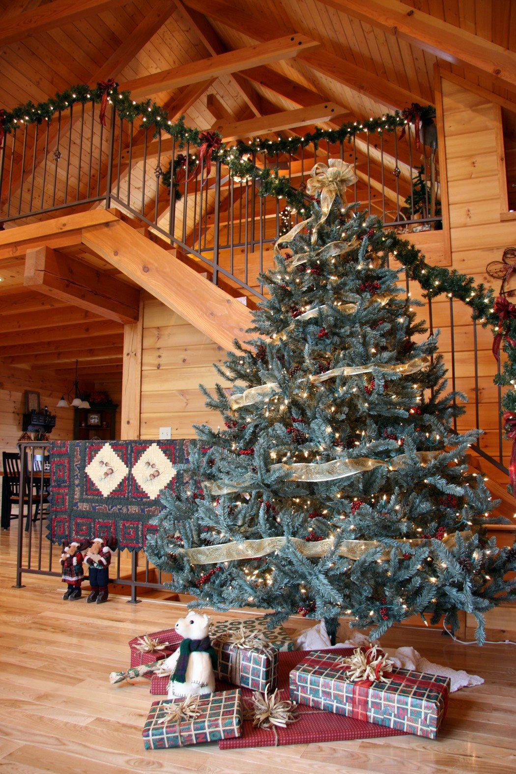 douglas_fir_christmas_tree