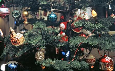 noble_fir_tree