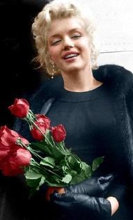 marilyn monroe roses resized 600