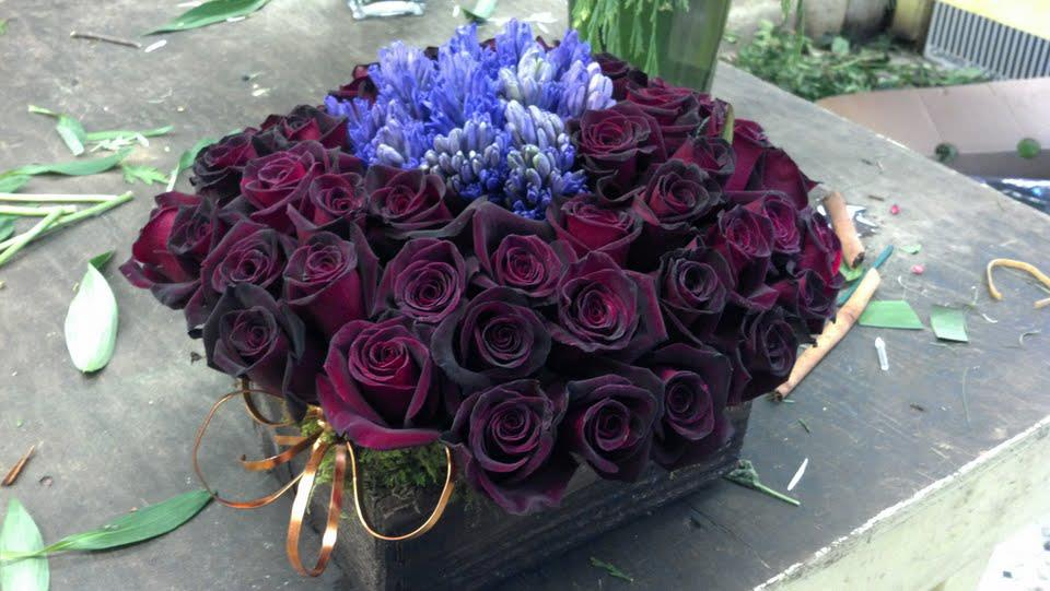 valentines flowers in boston
