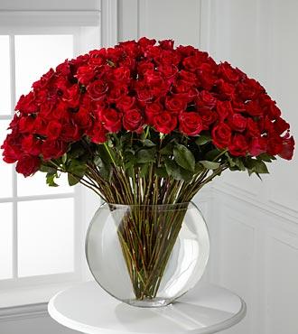 Red Roses in Boston