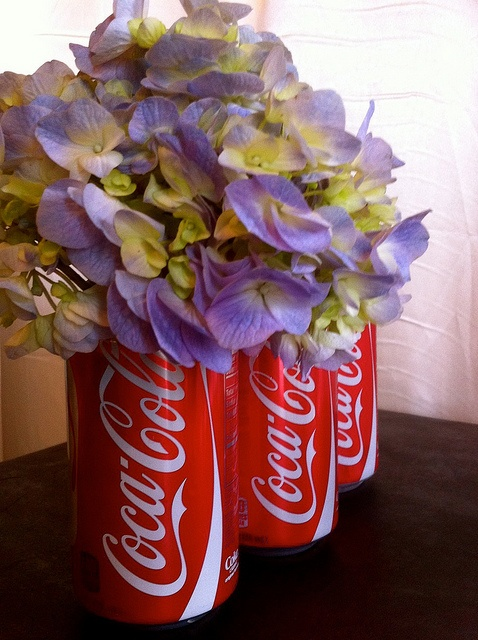 coca cola cans and hydrangea