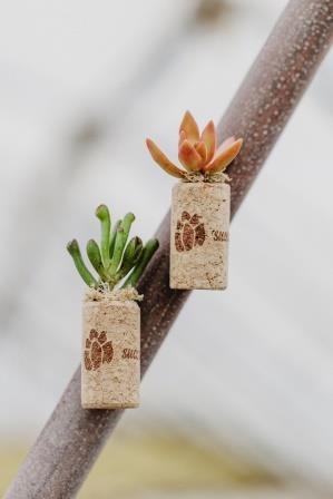 arizonaeast_magneticcorkplanter.jpg