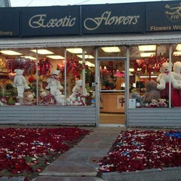 exotic flowers boston