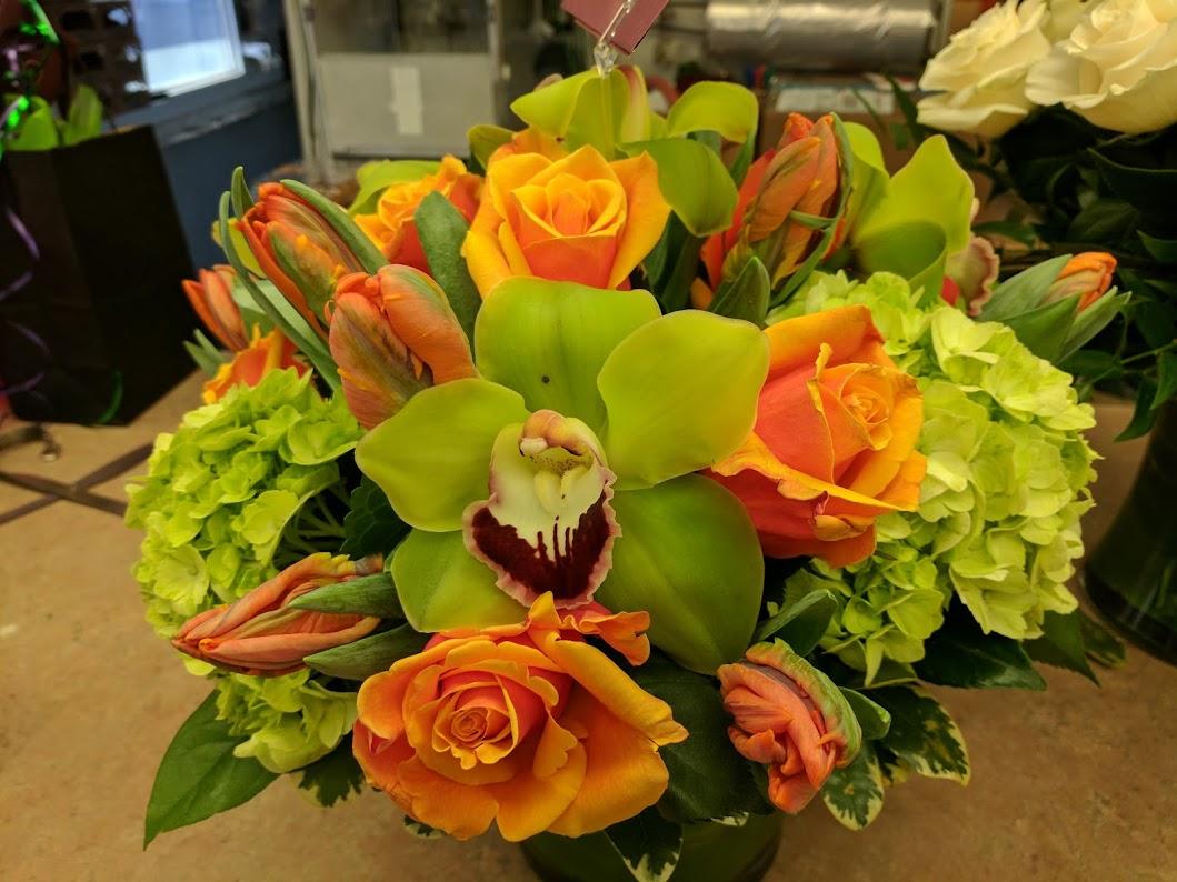 exotic flowers in boston.jpg
