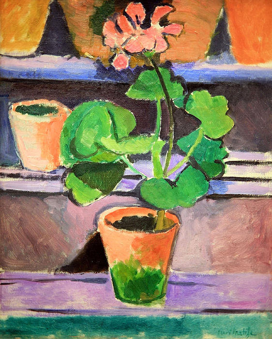 matisses-pot-of-geraniums-cora-wandel.jpg