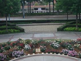 mlk_jr_peace_garden.jpg