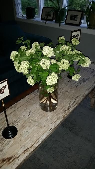 mothersdayflowers.jpe