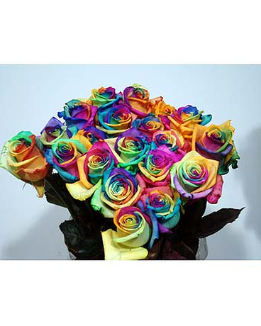 rainbow roses boston