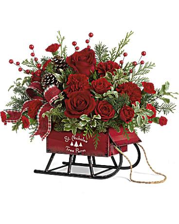 rosy sleigh teleflora flowers
