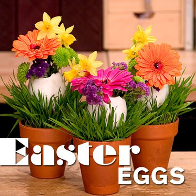 easter_eggs.jpg