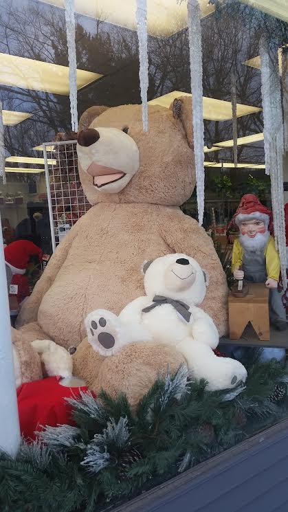 teddy bears boston.jpg