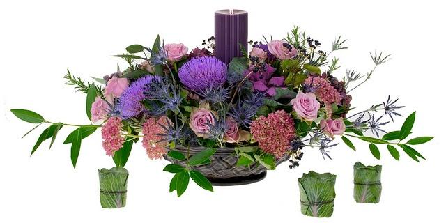 thistle_flower_meaning.jpg