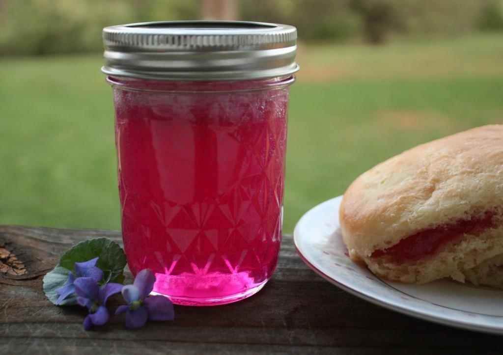 violet-jelly-6-1024x723.jpg