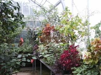 wellesley college garden.jpg