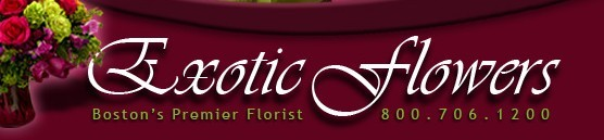 Exotic-flowers_01