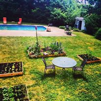 gardens_in_boston