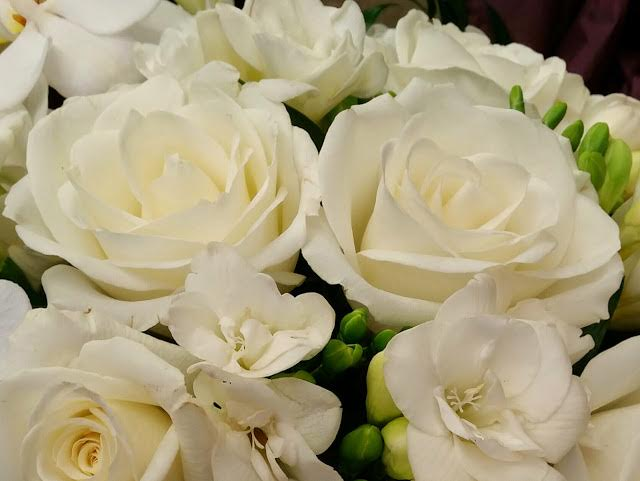 What Is The Meaning Of A White Rose
